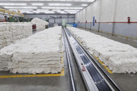 Shadab Textile Mills Limited