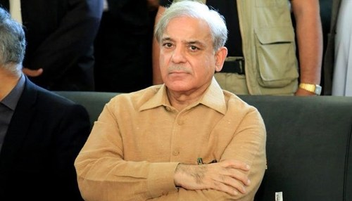 Opposition leader Shehbaz Sharif recovers from coronavirus