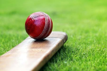 After ventilators, Pakistan to develop its own smart cricket balls