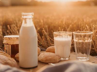 PDA chief says dairy sector has potential to employ 60 million people