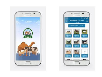 Punjab launches 'Bakar Mandi Online' during corona season