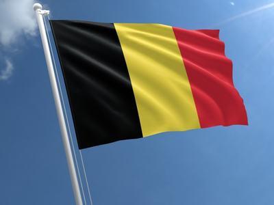 Belgium suspends arms exports to Saudi guard