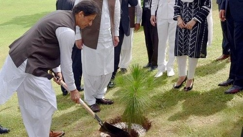 PM calls everyone to join him in 'biggest tree planting campaign' tomorrow