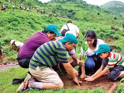 NFEH welcomes Imran's massive tree plantation drive