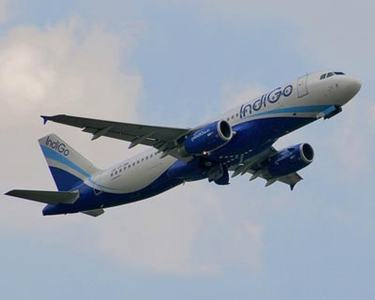 Indian airline IndiGo to fight virus woes with $534mn share issue