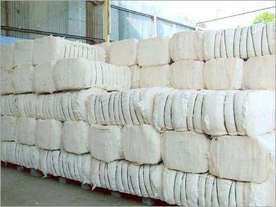 Scientists urged to develop cotton varieties with better fiber quality