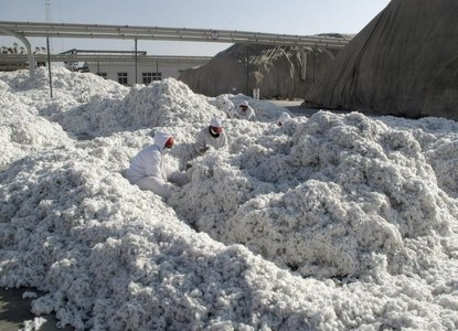 U.S. considering ban on cotton from Xinjiang region of China over rights concerns: New York Times