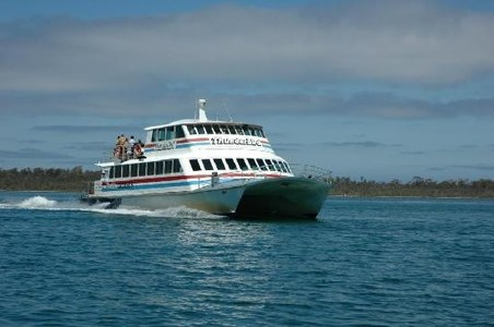 Cabinet allows launch of ferry service to possible destinations