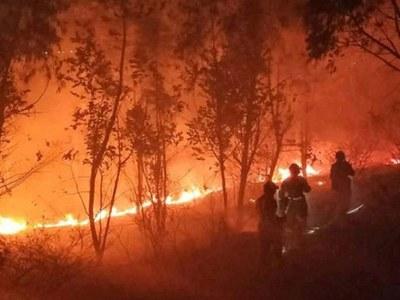 Wildfires devastate US West Coast, at least eight dead