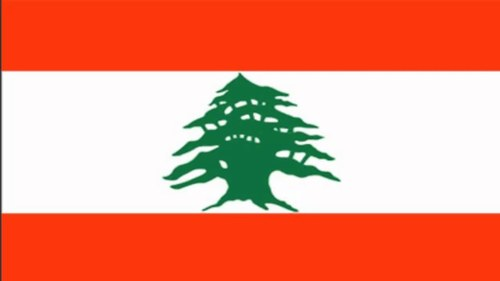 Lebanon says 9 IS-linked suspects killed in hunt for 'terrorists'