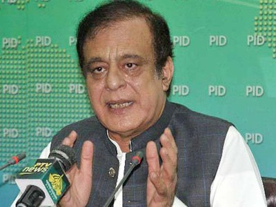 Maryam raising non-issues having no links with people's problems: Shibli