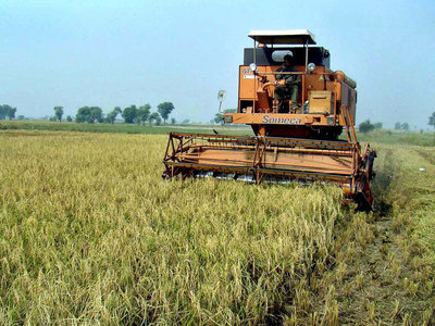 External trade: Agriculture is the weakest link