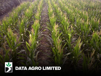 Data Agro Limited