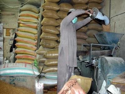 Flour rates come down as Sindh govt release wheat