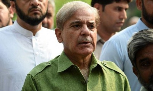Illegal allotment of plots: Court allows NAB to shelve inquiry against Shehbaz Sharif