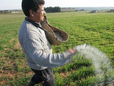 Fertilizer sales remain static