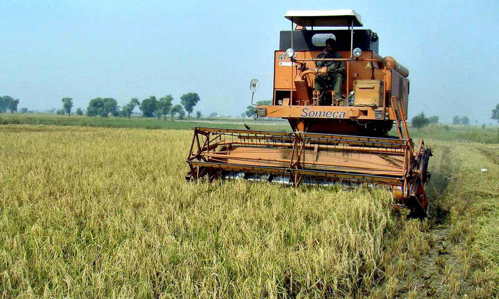 UAF to auction agri produce on Dec 17