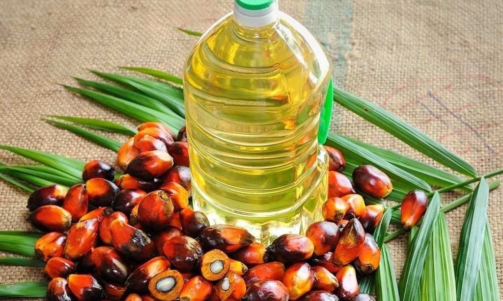Palm gains on lower supply forecast; weaker soyoil weighs