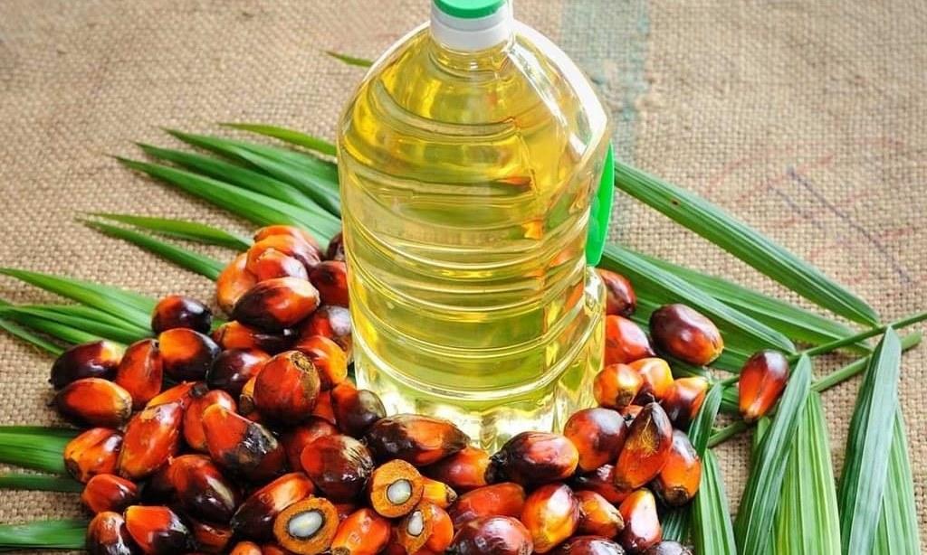 Palm oil neutral in 3,381-3,426 ringgit range