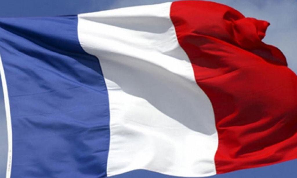France confirms severe bird flu outbreak on duck farm
