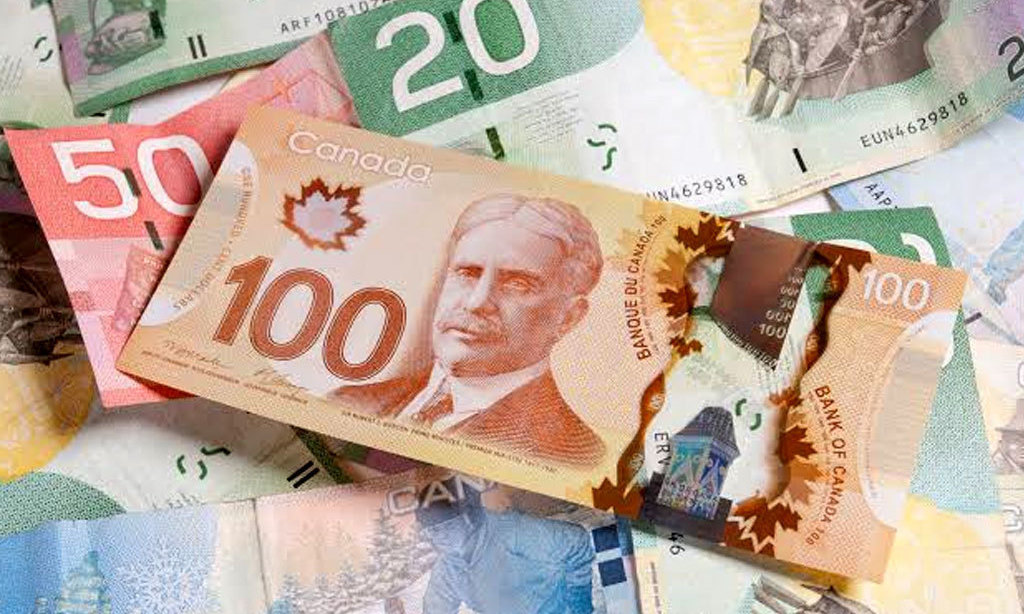 Loonie steadies as rising COVID-19 cases weigh on sentiment