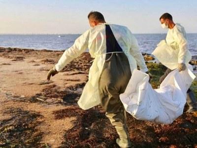Bodies of 20 migrants retrieved off Tunisia: ministry