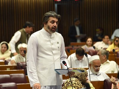 Pakistan to continue to support Kashmir's 'freedom': Ali Muhammad Khan