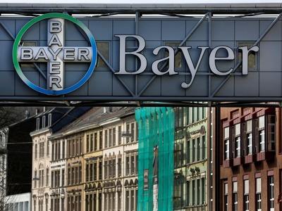 Investors sue Bayer over stock's slump in wake of Roundup litigation