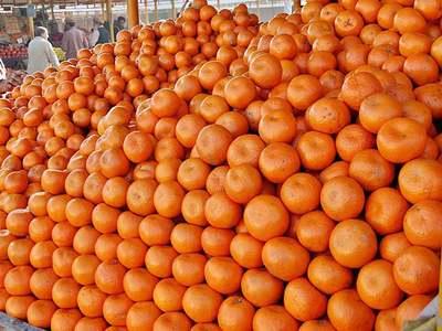 Orange sells 1.3bn euros worth of fixed fibre assets