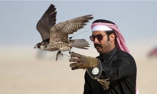 Saudi prince arrives in Pakistan to hunt houbara bustards