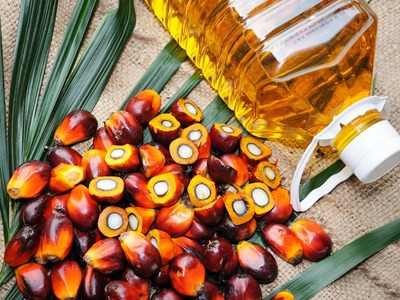 Palm oil may fall to 3,322 ringgit
