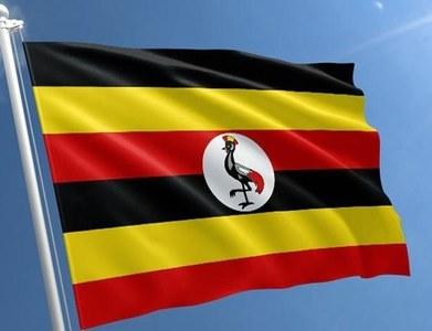 32 killed in road pile-up in Uganda
