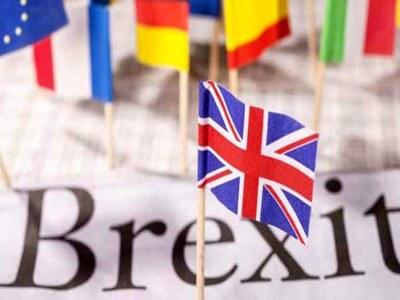 Brexit and Covid slash UK exports to EU: report