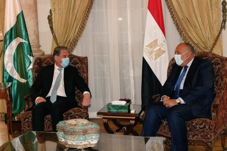 FM Qureshi, Egyptian counterpart discuss ways to enhance bilateral cooperation