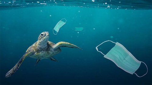 Here's how Unilever Pakistan is helping to clean up and #FaceThePlastic