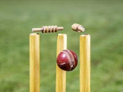 Australia set New Zealand tough target in third T20