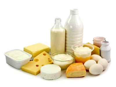 Dairy sector for genetically improving local breeds