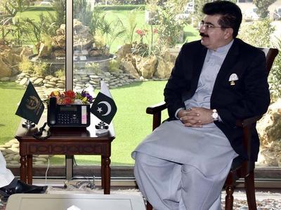 Sanjrani, Afridi meet Sindh governor