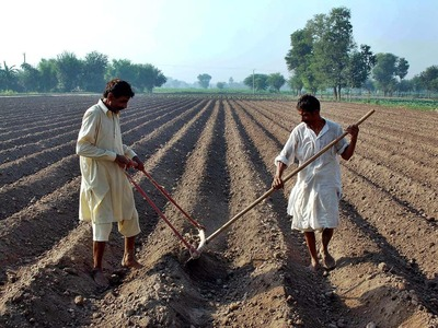 2021 will be the year of farmers in Punjab: governor