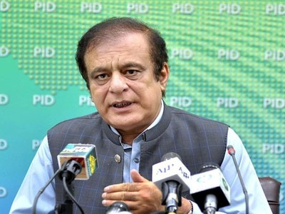 Govt standing firm to ensure rule of law: Shibli Faraz