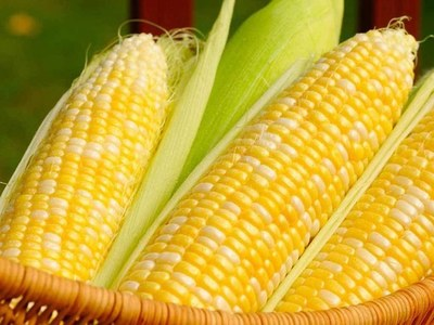 US MIDDAY: Corn futures ease; wheat, soyabeans up