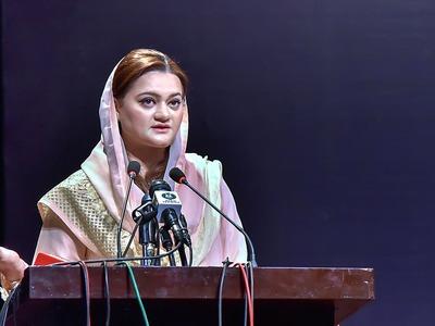 Marriyum slams govt's move to book Sana under ATA