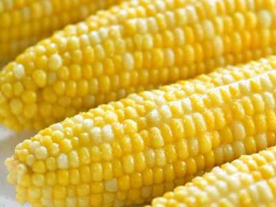 Corn, soy ease ahead of weekend, after surge to multi-year highs
