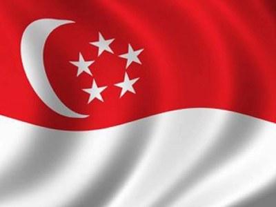 Singapore names new finance minister