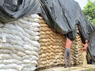 Corn, wheat hit 8-year highs on Brazil, US weather worries