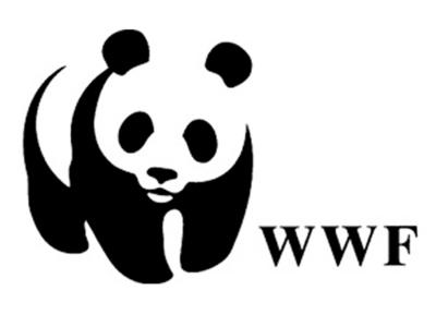 WWF-Pakistan calls for ban on migratory birds' hunting