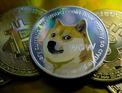 Dogecoin loses third of price after Elon Musk calls it a 'hustle'