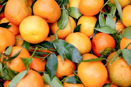 Despite COVID Pakistan's citrus exports show double digit growth
