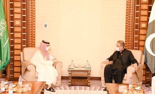 Pakistan, Saudi Arabia agree to continue close consultations, coordination on Palestine situation