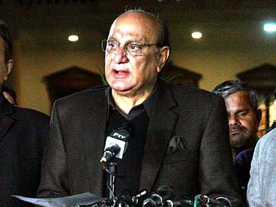 Govt successfully raised Palestine issue internationally: Raja Basharat